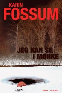 Jeg kan se i mørke (e-bog) af Karin F